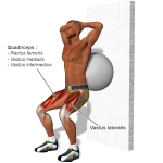 quadriceps-exercises-l.jpg